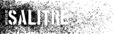 logo_blanco SALITREmini.jpg